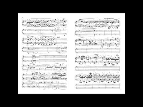Brahms Piano Concerto no 1 - Sokolov - With Score - Live