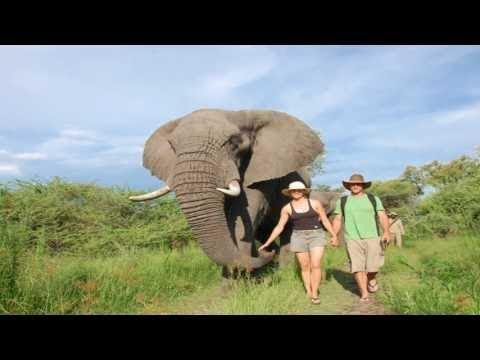 Africa Safaris and travel 2016 - Botswana, Zimbabwe & Zambia