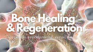 ❉ Bone Healing & Regeneration! ~ Rife Frequencies ~ Relaxing Water and Nature Sounds