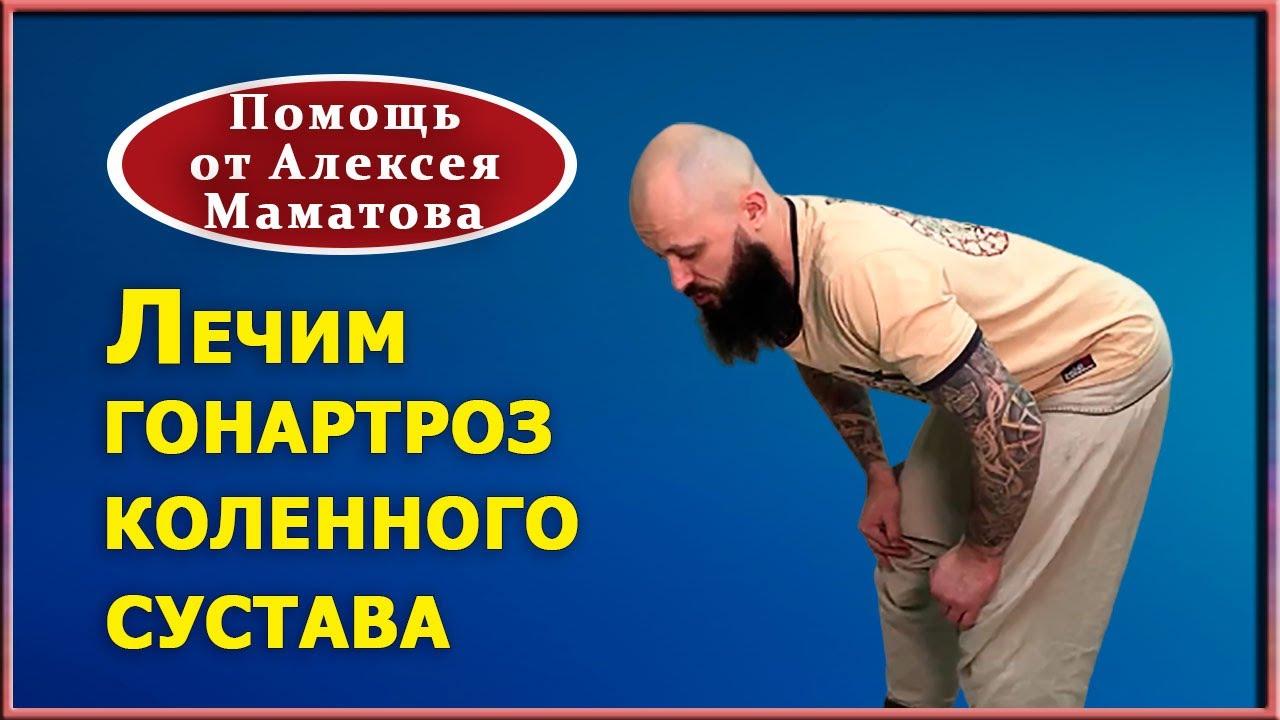 Как помочь себе при артрозе, гонартрозе коленного сустава. Практика от Алексея Маматова
