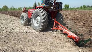 MF 385 4WD TURBO AIR CLOSE PERFORMANCE WITH 4TINE BOARD PLOUGH