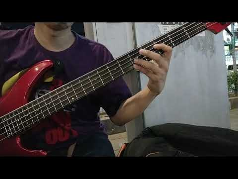 Jujur (Radja)  Live Bass Cover By Mizi Mello.