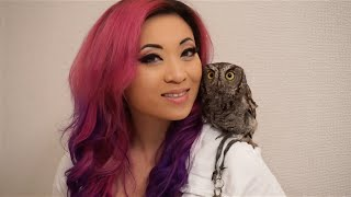 Yaya Han - Japan Vlog - Owl Cafe!
