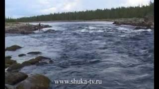 Рыбалка на Кольском на реке Явр Fishing on the Kola