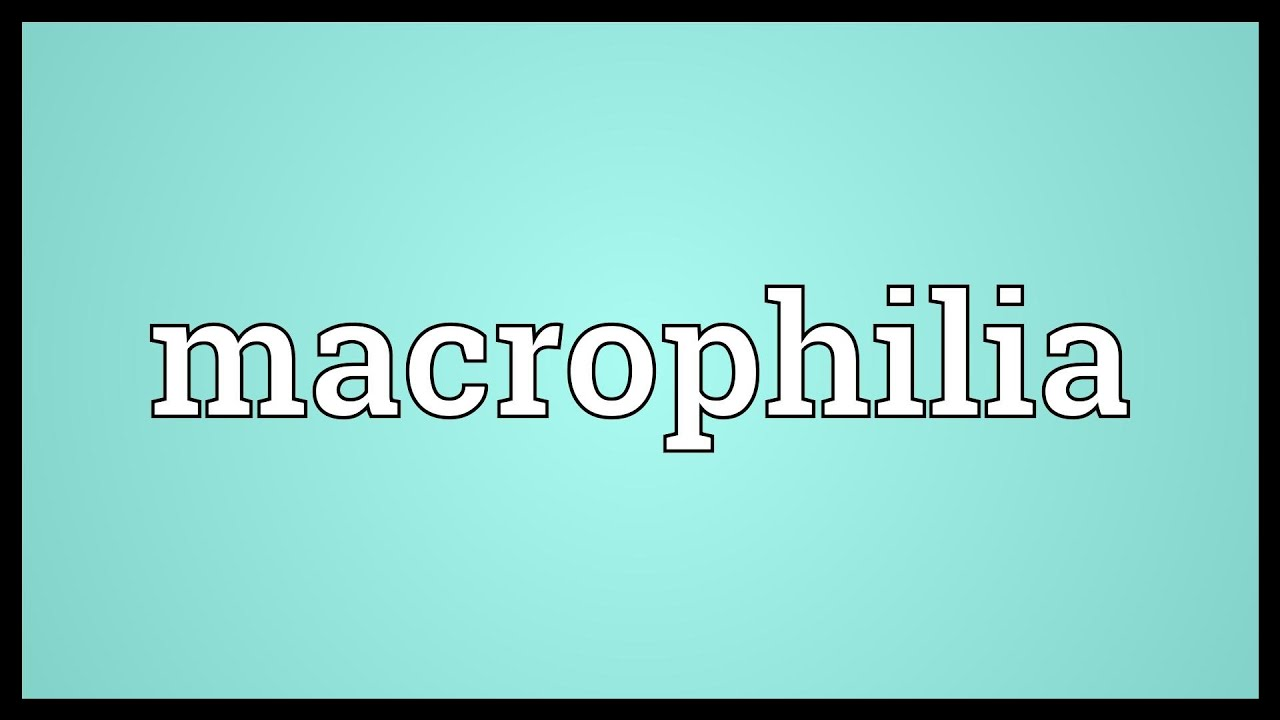 Macrophilia