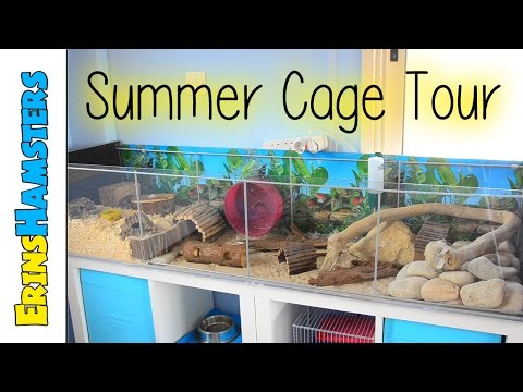 rustic-themed-hamster-cage
