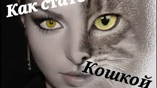 Как стать..?! Выпуск 1 # 《 Кошкой 》
