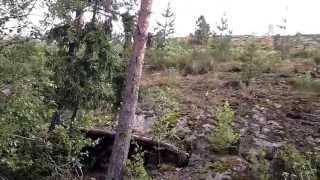 Релаксирующее видео. Успокаивает психику.(Релаксирующие звуки плещущейся о скалы Ладожского озера воды. Вечно зеленые ели и голубой катер. Рекомендо..., 2013-07-12T23:41:20.000Z)