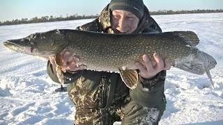 Зимняя рыбалка с Ночёвкой! Ловим Огромных Щук на Живца! Три дня и две ночи на озере!