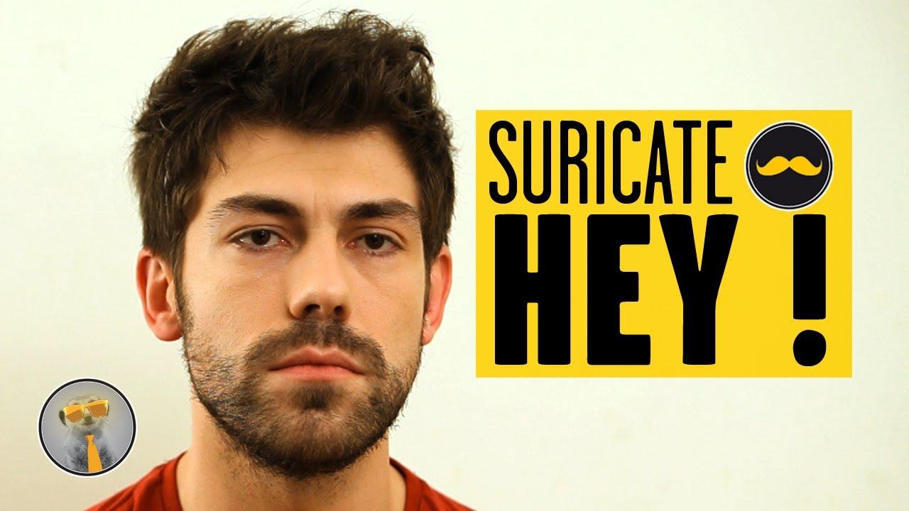 SURICATE – Hey !