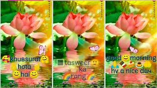 Beautiful Good Morning Full Screen WhatsApp Status Video By Prasenjeet Meshram
