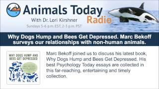 Why Dogs Hump And Bees Get Depressed. Marc Bekoff Surveys Our Relationships With Non-human Animals.