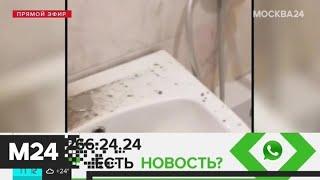 Москвич пожаловался на дыру в ванной от ремонта соседей - Москва 24