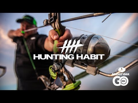 Hunting Habit Bowfishing Giant Carp