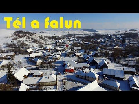 Dálya decemberben - Gazdag Erzsi: Tél a falun