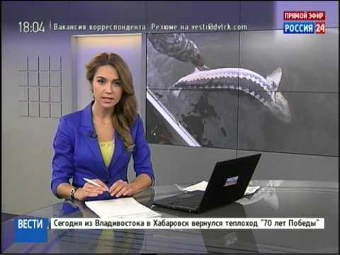 Вести-Хабаровск. Поймали браконьеров в Полине Осипенко