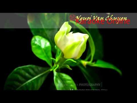 [Karaoke] Đôi Mắt Người Xưa - Quang Lê Karaoke HD
