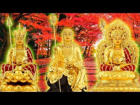 Phật Tử nào có Duyên nghe được Kinh này cả đời hưởng Phúc Đức