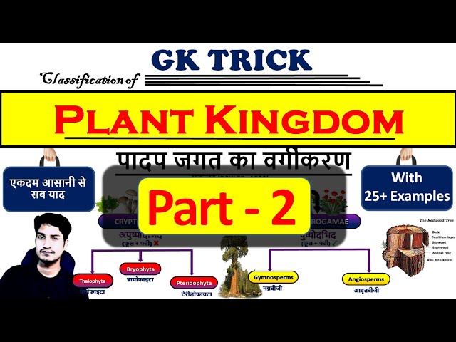 Part 2 : Classification of Plant Kingdom with charts |  What is the plant kingdom in hindi?