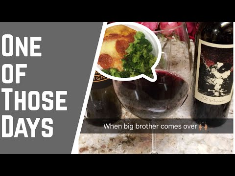 Diet Vlog 121 | The Struggle | Need Chones | Wine Please | Big Brother Visits