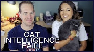 TESTING MY CAT'S INTELLIGENCE!!