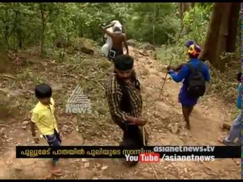 Tiger found in Sabarimala route | Security tightened in traditional path