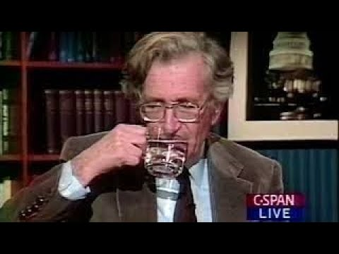 Noam Chomsky opinion on illegal immigration Best Documentary Ever