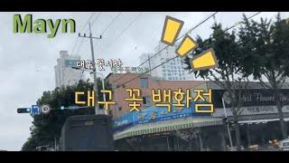 대구 꽃시장 / Daegu Flower Market, …