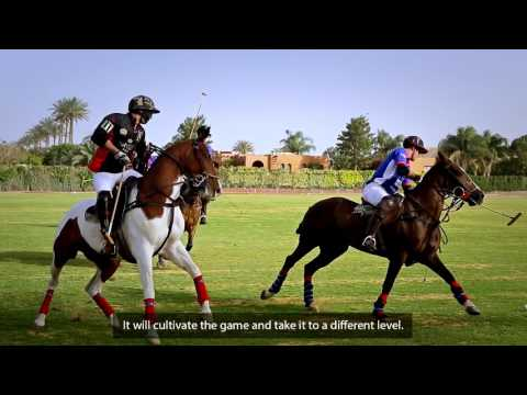 History of Polo Sport in Egypt by Kinetics