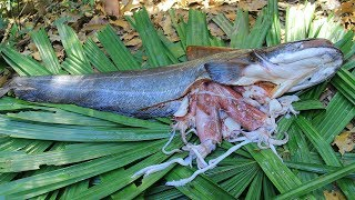 Wow! Squids In Big Catfish Stomach and then Cooking Squids In River