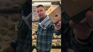 When Do You Empty a Carpenter Bee Trap? Watch to Find Out