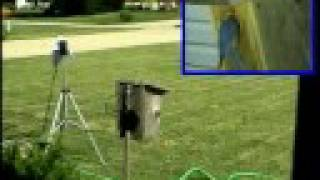 Bluebird House - P-i-p - 2 Cameras Wireless Mic