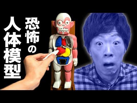 【恐怖】暴れだす人体模型 VS セイキン