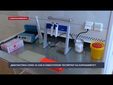 Где в Севастополе сдать анализ на коронавирус рассказала эпидемиолог