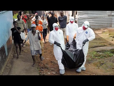 "World Bank warns Ebola could ""drain billions of dollars"" from West Africa"