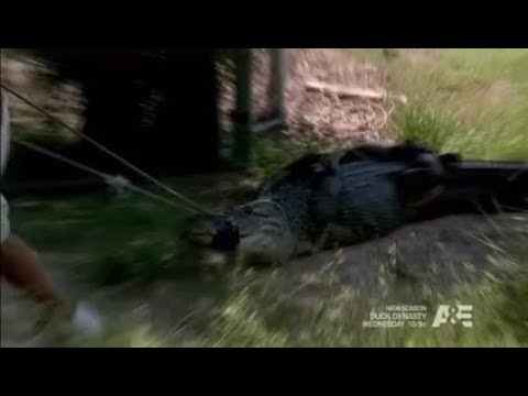 Billy the Exterminator S05E13 Monster the Gulf