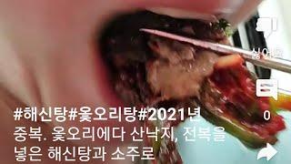 #해신탕#옻오리탕#2021년 중복. 옻오리에다 산낙지,…