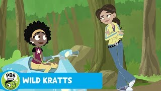 Wild Kratts: Case of the Mystery Hole thumbnail