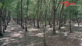Sirivennela - Prakruthi Kanthaku Enenno - Telugu Song - TeluguOne