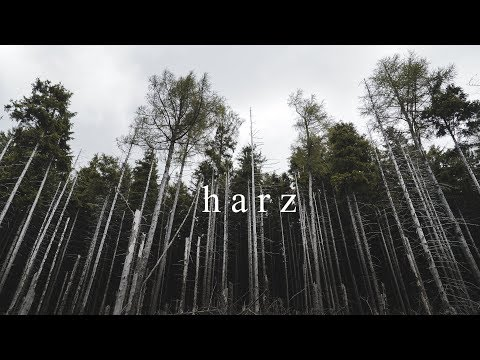 harz  germany | nature cinematic video | sony a6000, sony 18105 f4