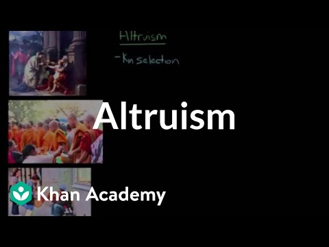 Altruism | Individuals and Society | MCAT...