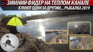 Клюют один за другим... Ловля зимой на фидер по открытой воде на тёплом канале