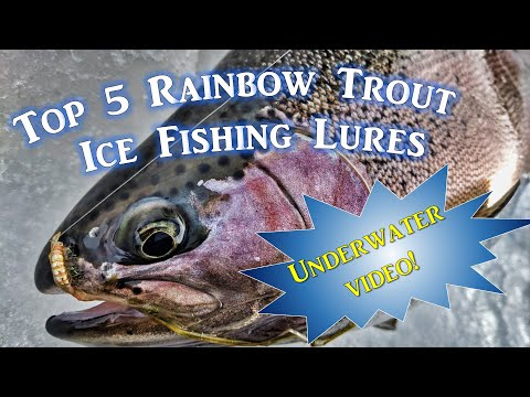 Top 5 Ice Fishing Lures For Rainbow Trout (Underwater Video)
