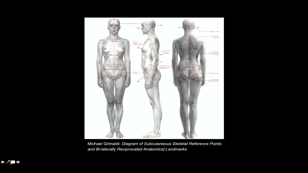 Michael Grimaldi: Anatomy and Physiology in Fine Arts Education and ...