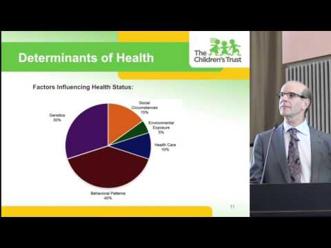 Mailman Grand Rounds-State of Child Health in Miami-Dade County