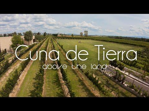 Viñedo Cuna de Tierra - above the land
