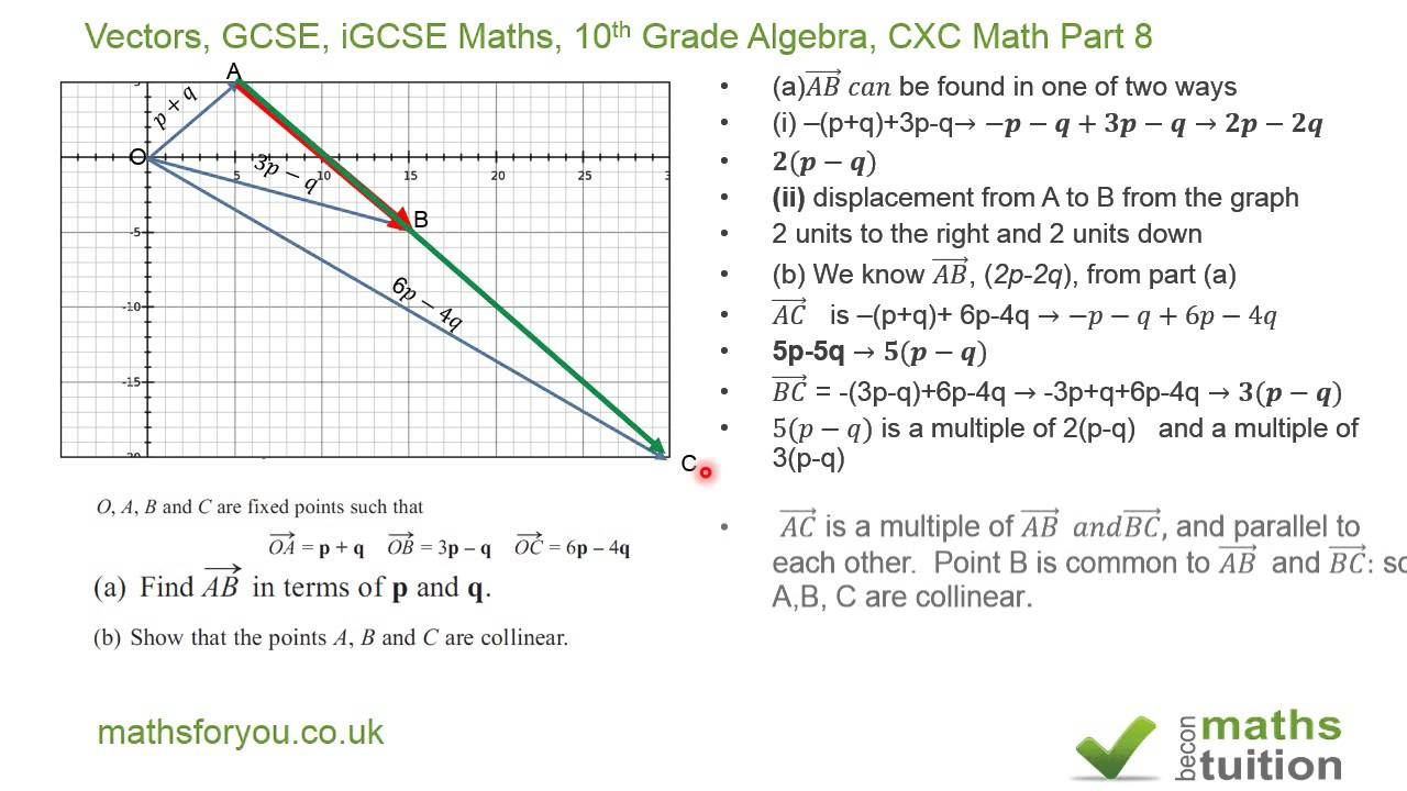 Vectors  Gcse  Igcse Maths  10th Grade Algebra  Cxc Math