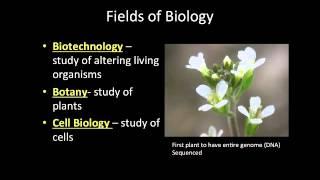 Fields of Biology