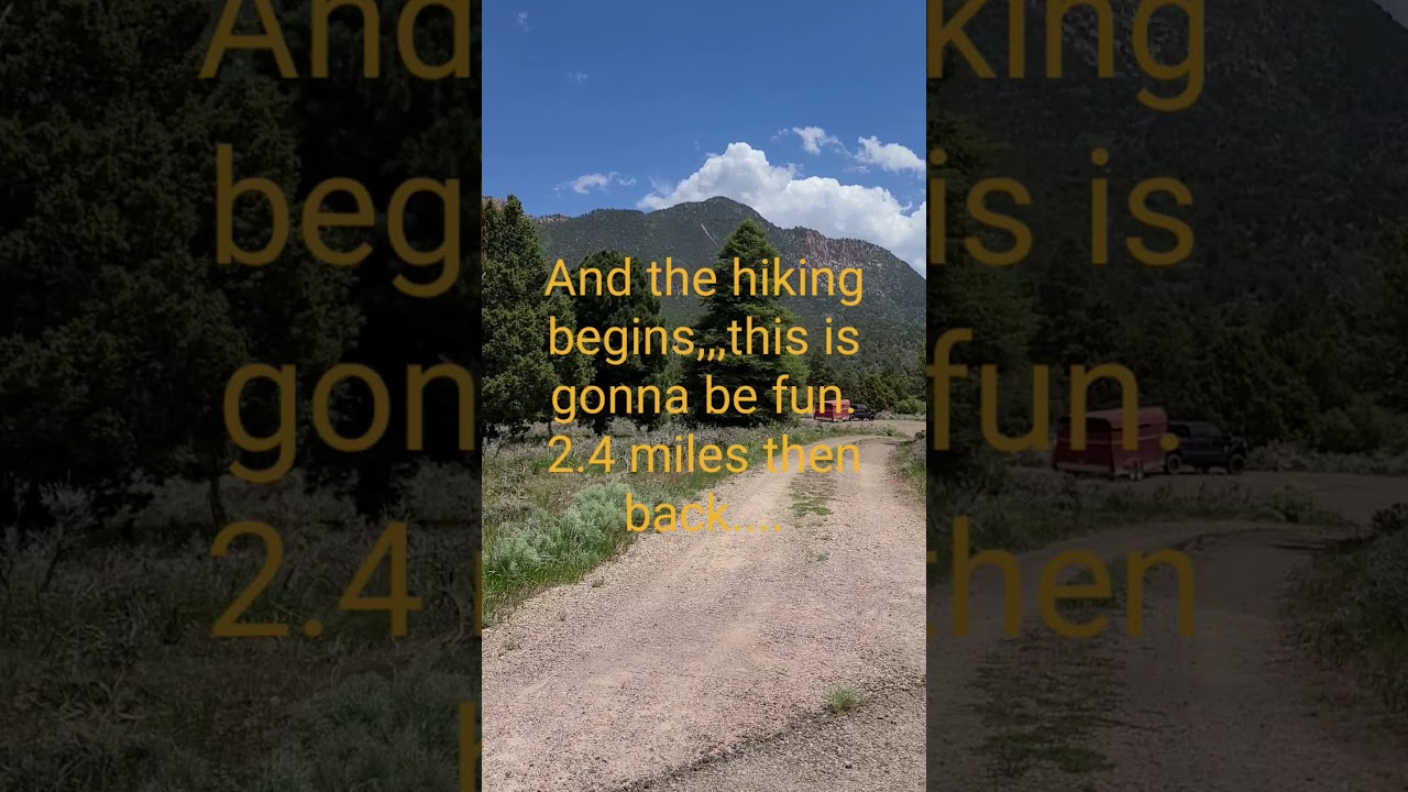 Our Hiking @ Pine Valley, Utah(1) - YouTube