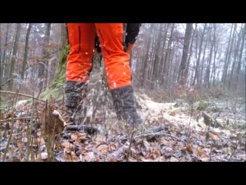 Logging with Stihl MS 461 - Ported